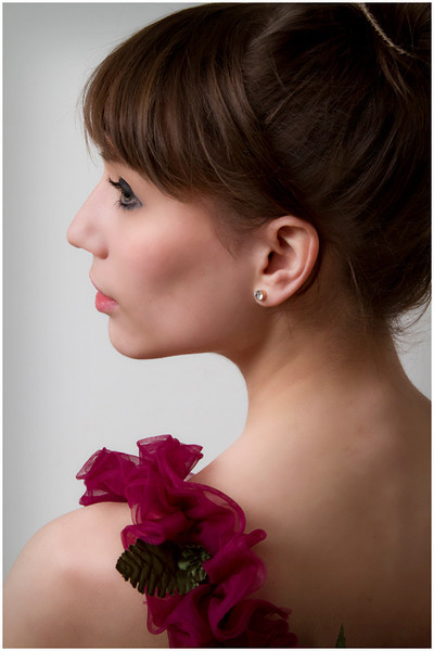 Ballerina in Profile - Theresa Hart<br /> DPI of the Month - May 2012