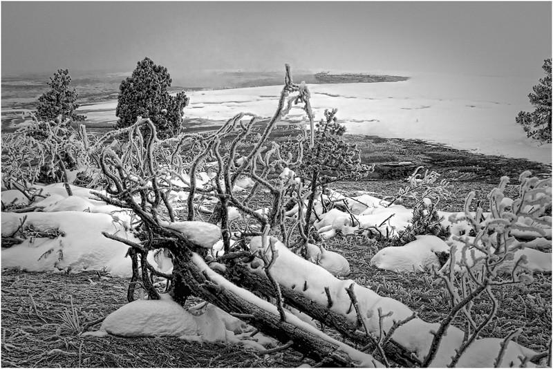 Wesley Kiel - Yellowstone Winter Scene<br /> (DPI) May 2010