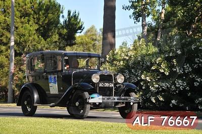 ALF 76667