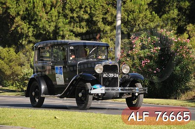 ALF 76665