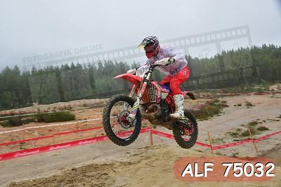 ALF 75032