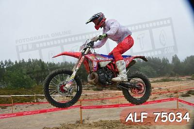 ALF 75034