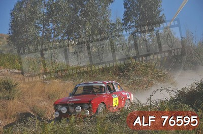 ALF 76595