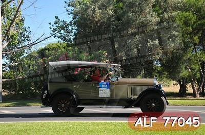 ALF 77045