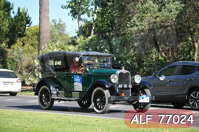 ALF 77024
