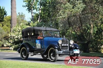 ALF 77025