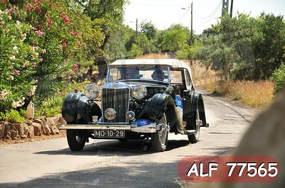ALF 77565