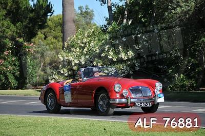 ALF 76881