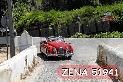 ZENA 51941