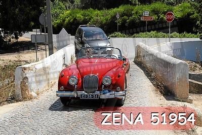 ZENA 51954