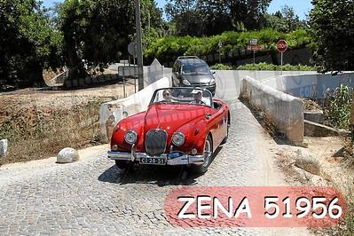 ZENA 51956
