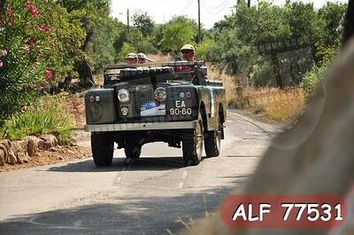 ALF 77531