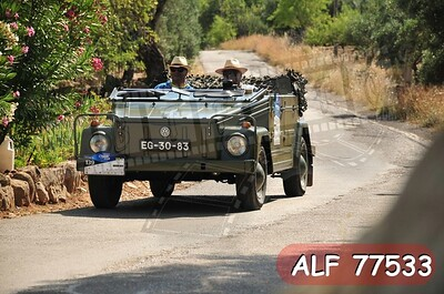 ALF 77533