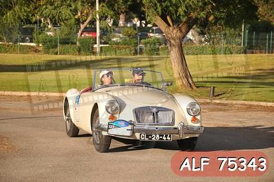 ALF 75343