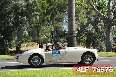 ALF 76976
