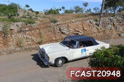FCAST20948