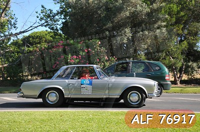 ALF 76917