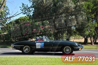 ALF 77031