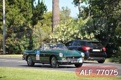 ALF 77075