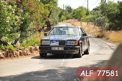 ALF 77581