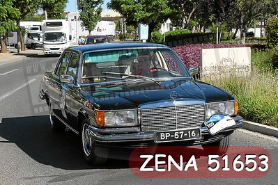 ZENA 51653