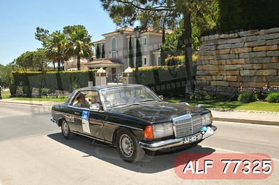 ALF 77325