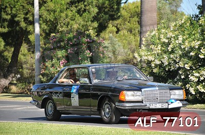 ALF 77101