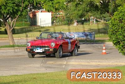 FCAST20333