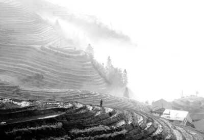 "Sarah Yuen - ""The land is beneath my feet"""