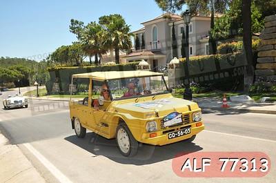 ALF 77313