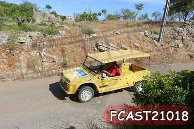 FCAST21018