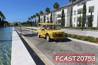 FCAST20753