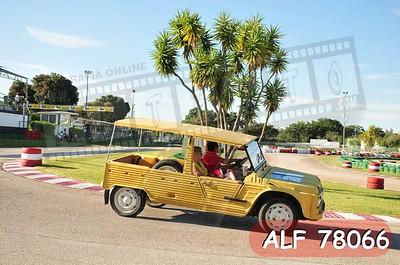 ALF 78066