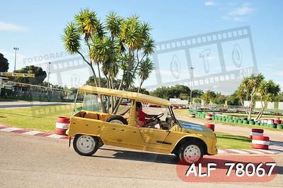 ALF 78067