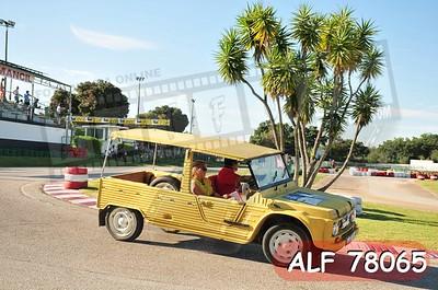 ALF 78065