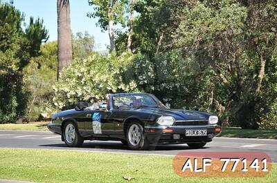 ALF 77141