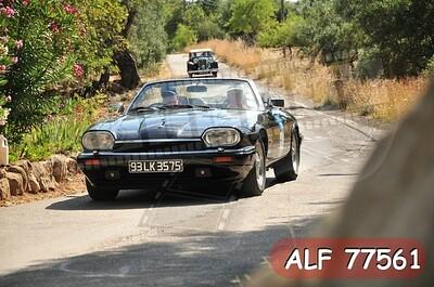 ALF 77561