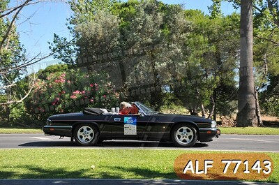 ALF 77143