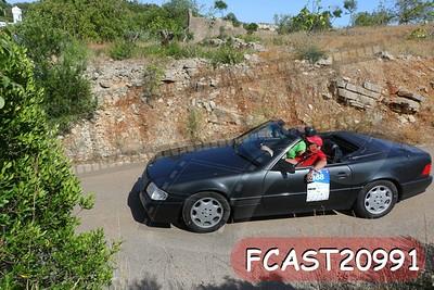 FCAST20991