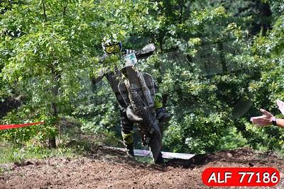 ALF 77186