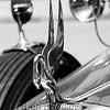 Packard Emblem