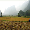 Vietnamese Valley