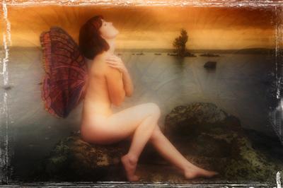 Merit - Fairy Queen