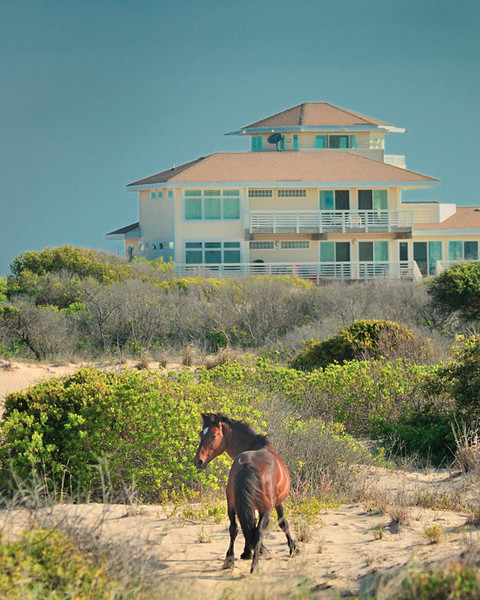 Magazine Photography-B-3rd-Dave Verchick-Homes of the Outer Banks