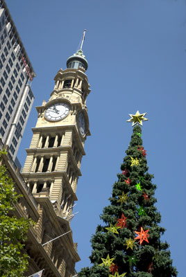 Xmas Tree in Martin Place