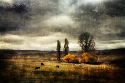 Autumn on the Monaro