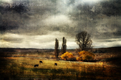 Autumn on the Monaro