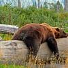 Parks-Class A-Bob Cunningham-Sleeping Bear Denali