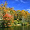 Parks-Class B-Gene Lentz-The Magnificence of Fall Color