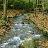 Parks-Class B-Gene Lentz-Beside the Flowing Stream, Pisgah Nat'l Forest